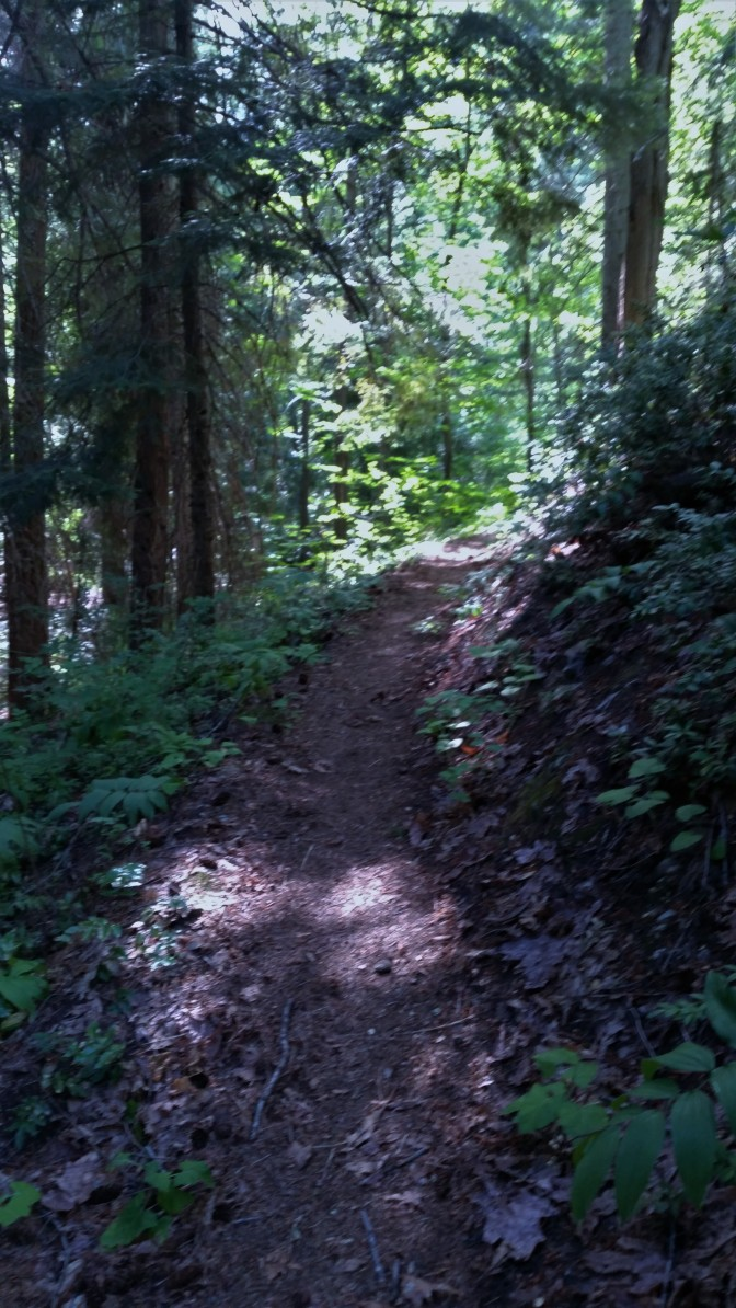 Agnes Gorge Trail